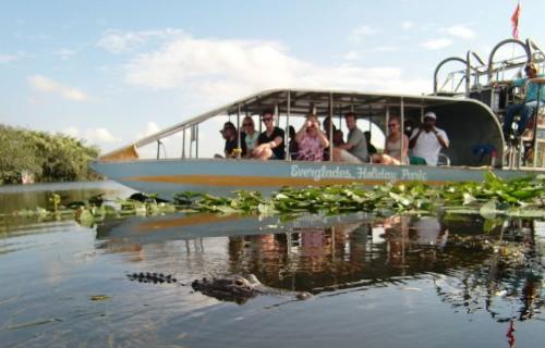 Everglades-73D87A96D3F5E87DE64FCEF60EDF